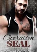 SEAL2eBook